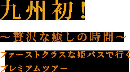 九州初!~贅沢な癒しの時間~ファーストクラスな姫バスで行くプレミアムツアー