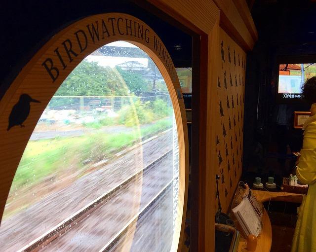 kawasemi-window.jpg